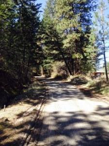 New Trail = New Adventure