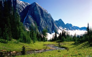 Nature___Seasons___Summer_Cold_summer_in_the_mountains_078338_